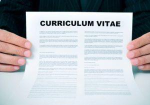 Download Contoh CV Lamaran Kerja